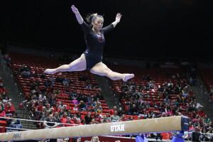 Gymnastics -kari lee