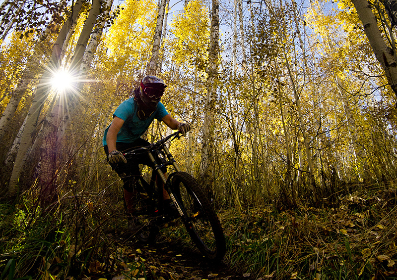 Mid-Mountain Mountain Bike Trail University of Utah