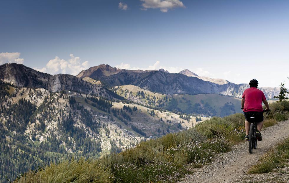 Wasatch Crest Mountian Bike Trail University of Utah