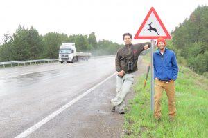 Cağan Şekercioğlu (left) and Mark Chynoweth at a wildlife crossing sign along the Kars-Erzurum highway that bisects Sarıkamış Forest.