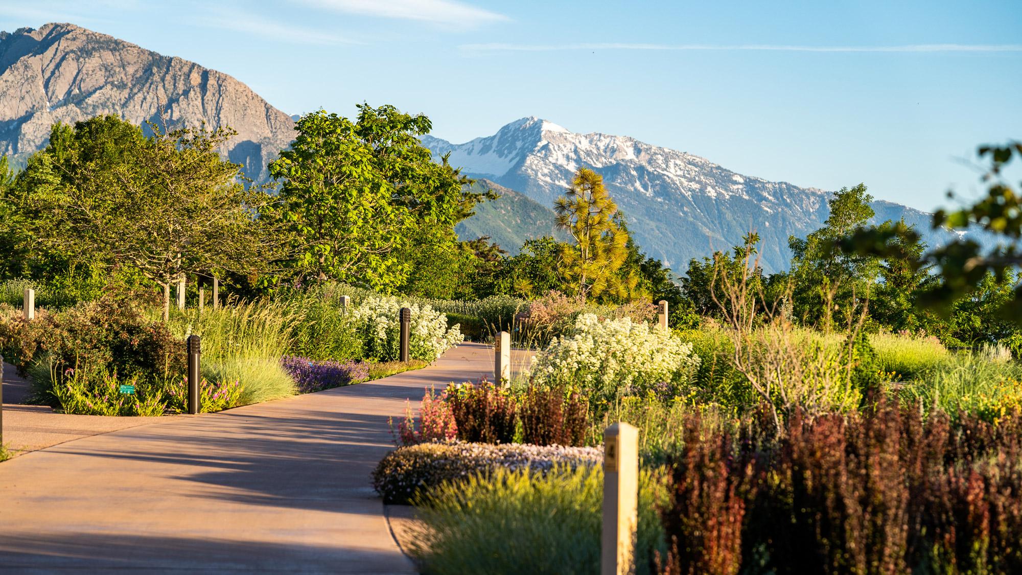 Red Butte Garden Utah, summer activities in Utah