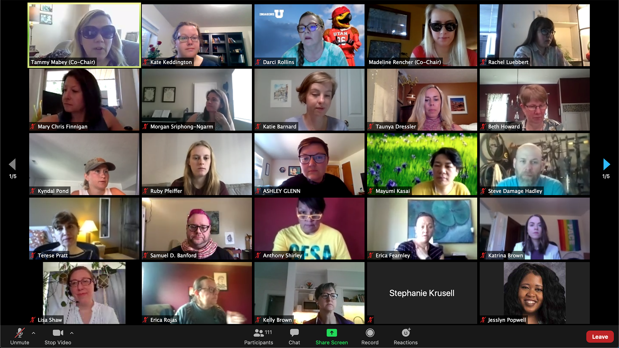 screenshot of the conference attendees on Zoom