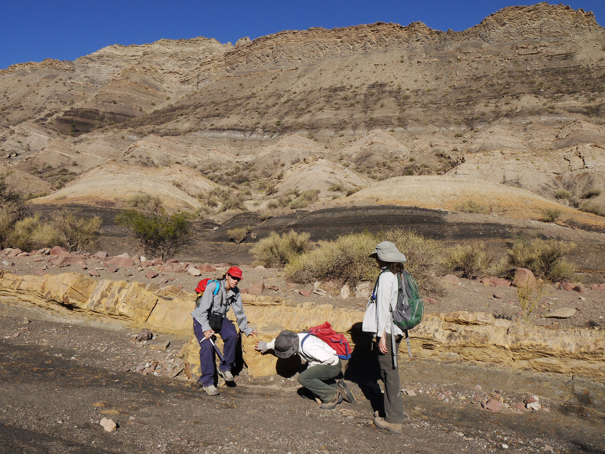 Three geologists crouch around a dinosaur footprint in a dry, arid landscape. A wall of brown and gold stands in the background, with sand dunes cascading towards the geologists. Dried silvery sagebrush dots the landscape.