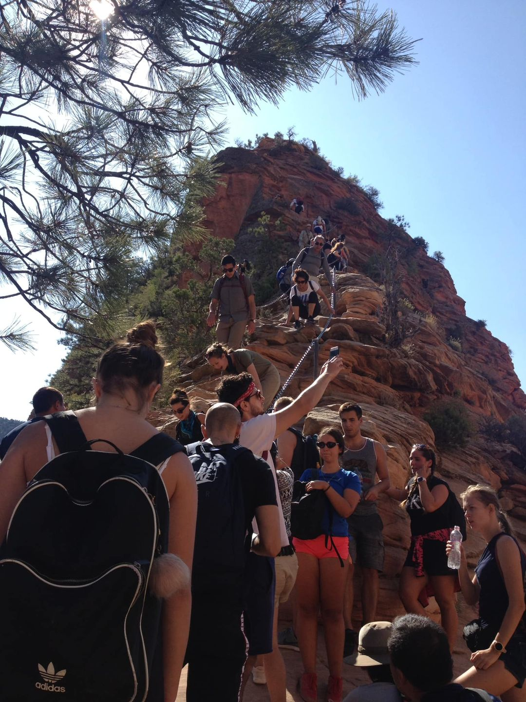 Hikers stand toe-to-heel in a long line up a narrow hike in Zion National Park in Utah. It looks like a line waiting to get into a rock concert. Some people are holding up their phones to take a selfie. They're waiting to go up a steep part of the trail that's the deep brown red rock iconic of the park.
