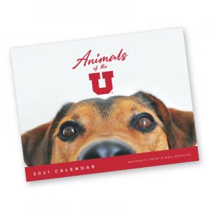 Animals of the U | @theU