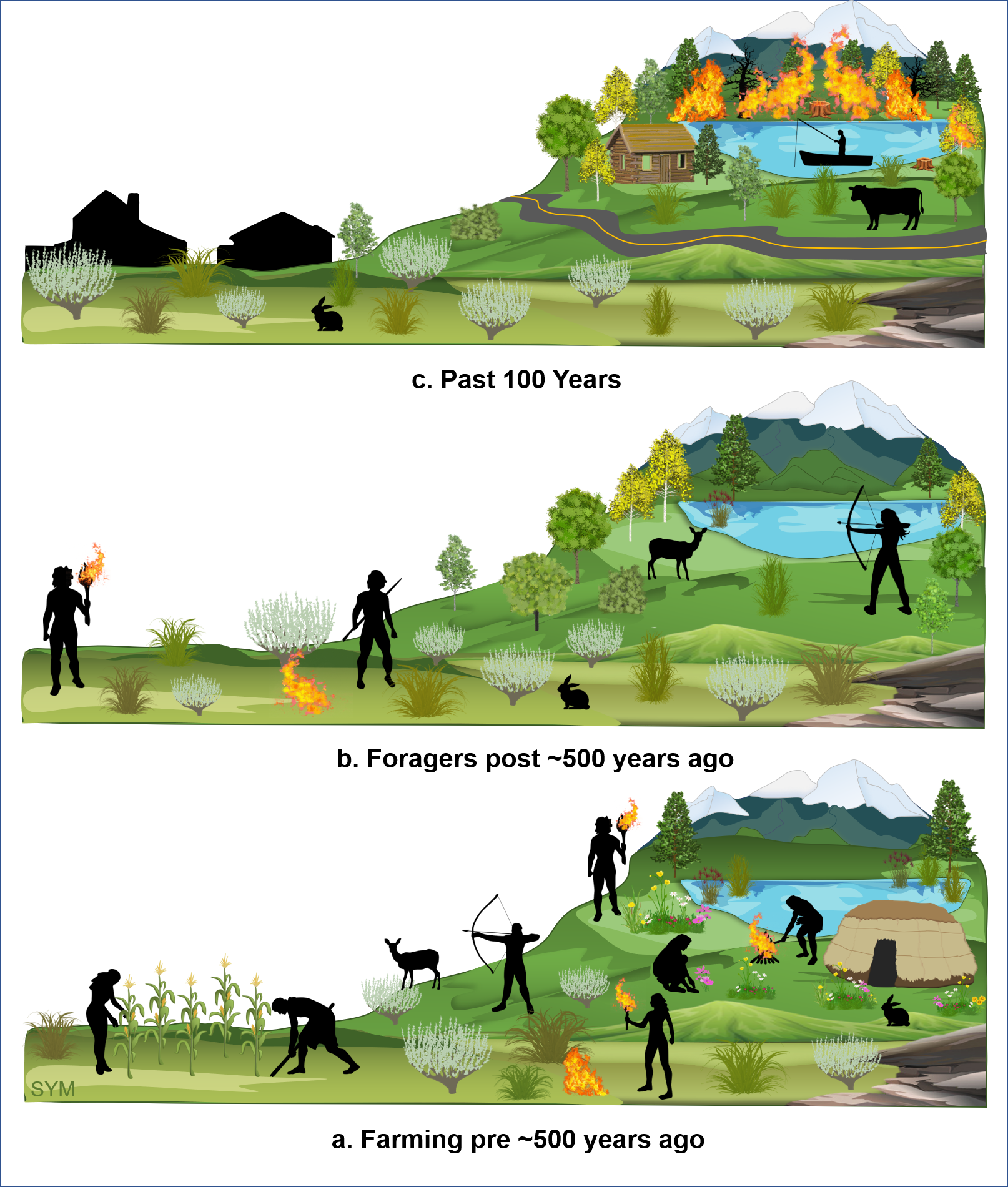 A schematic of what the authors think the landscape and human activity was like over the last 1,200 years in the Fish Lake Plateau region. The first panel shows a high density of people hunting, harvesting wild plants and cultivating crops and setting lots of fires. The second panel, farming activity ceased abruptly. Forgers and hunters still practiced cultural burning at less frequency than previously. The last panel shows European settlers made cultural burning illegal, and the landscape became dominated by forests.