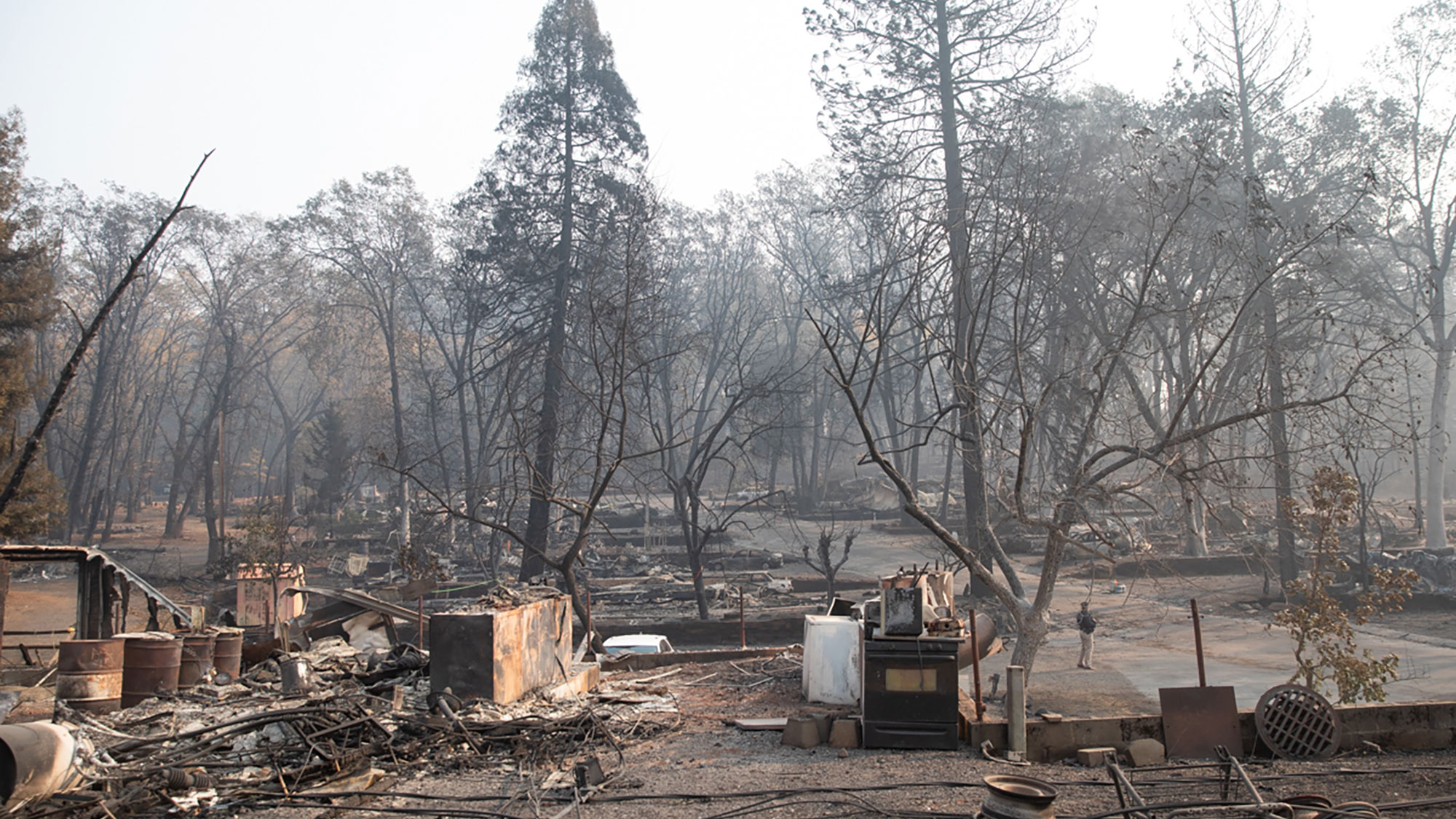A town in the forest where buildings are burned down, trees are blackened ash, with smokey air.