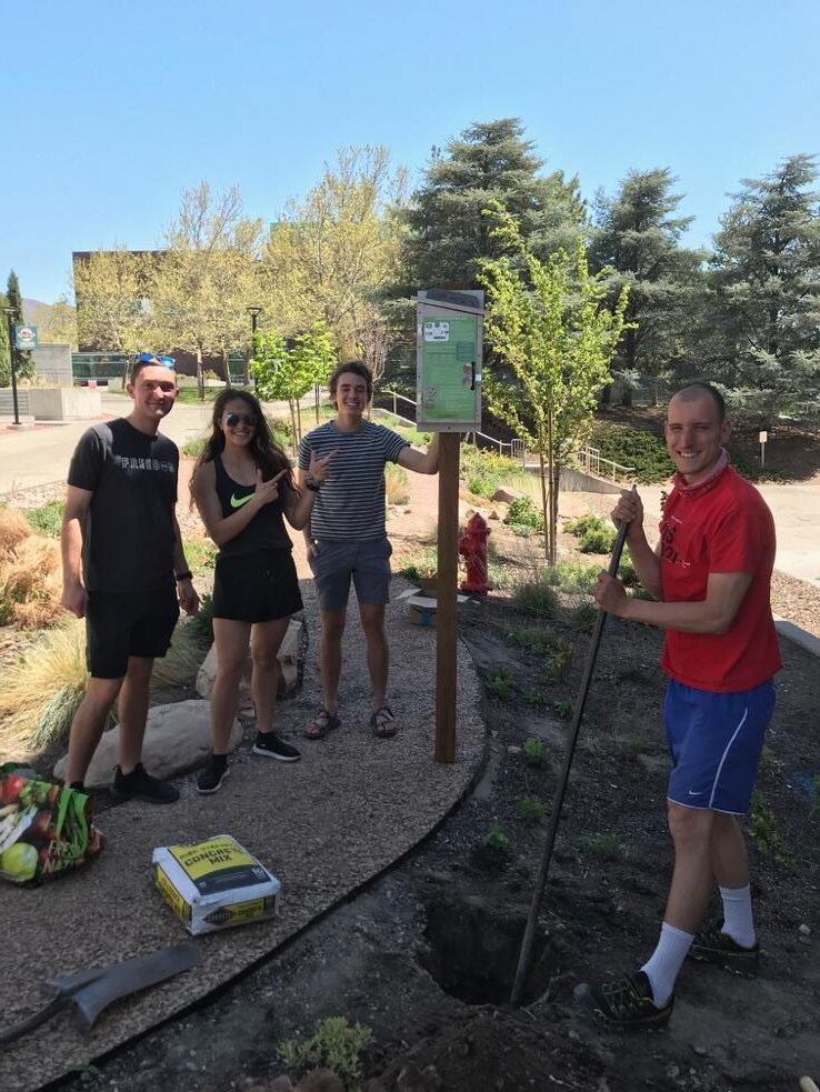 Four students installed a green sign on a wooden post next to a sidewalk in a garden.